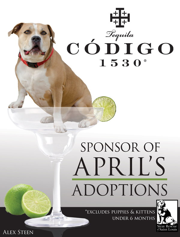 April Adoption Sponsor WEB