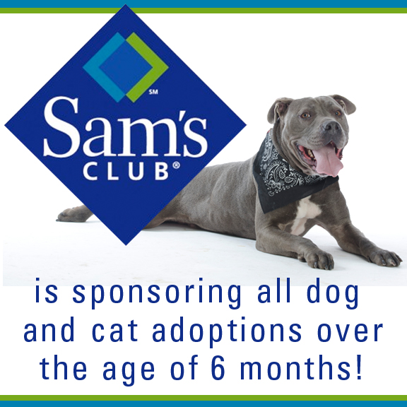 Sams Club Sponsoring adoption June WEB