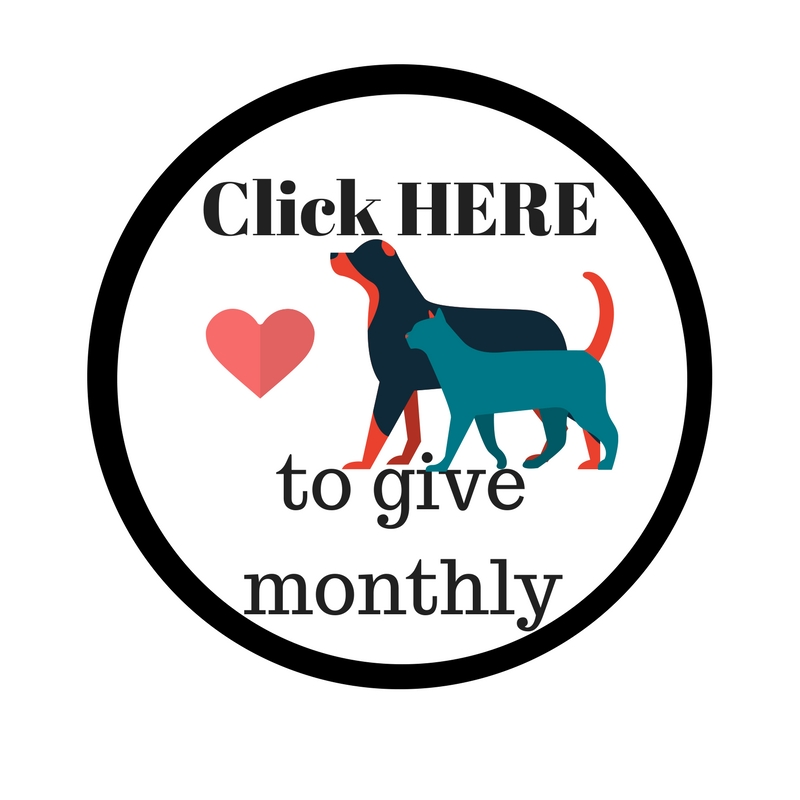 Click HERE to give monthly