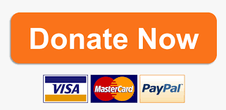 donate now orange