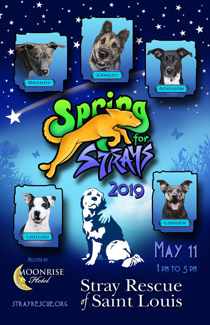 Stray Rescue of St  Louis - Spring for Strays 2019-Fundraising Event