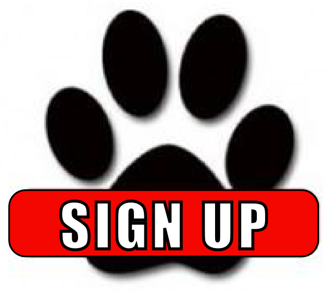 Sign Up Button3