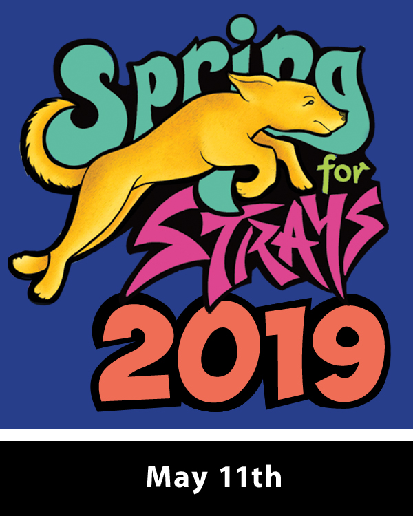 Spring for Strays Box for Site 2019 WEB