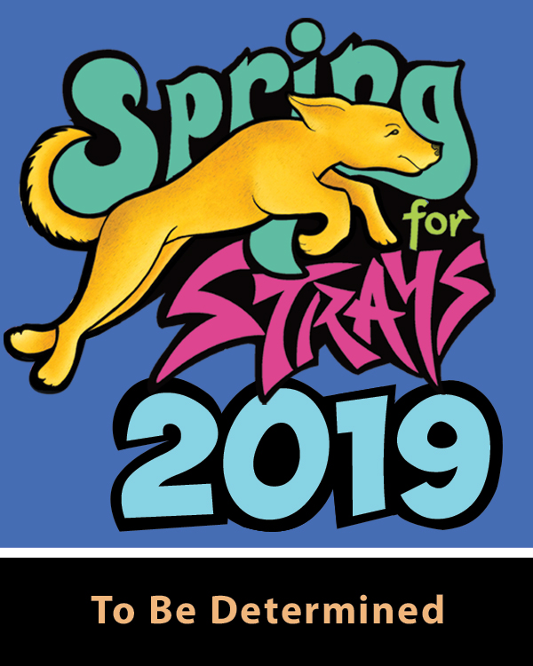 Spring for Strays Site graphic WEB