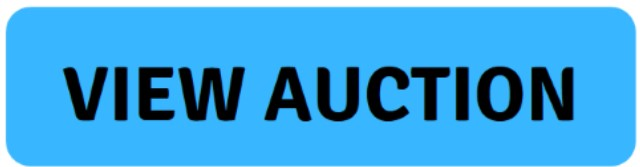view auction button