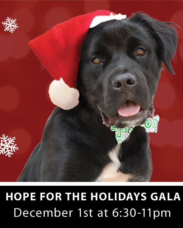 Hope For The Holidays Gala