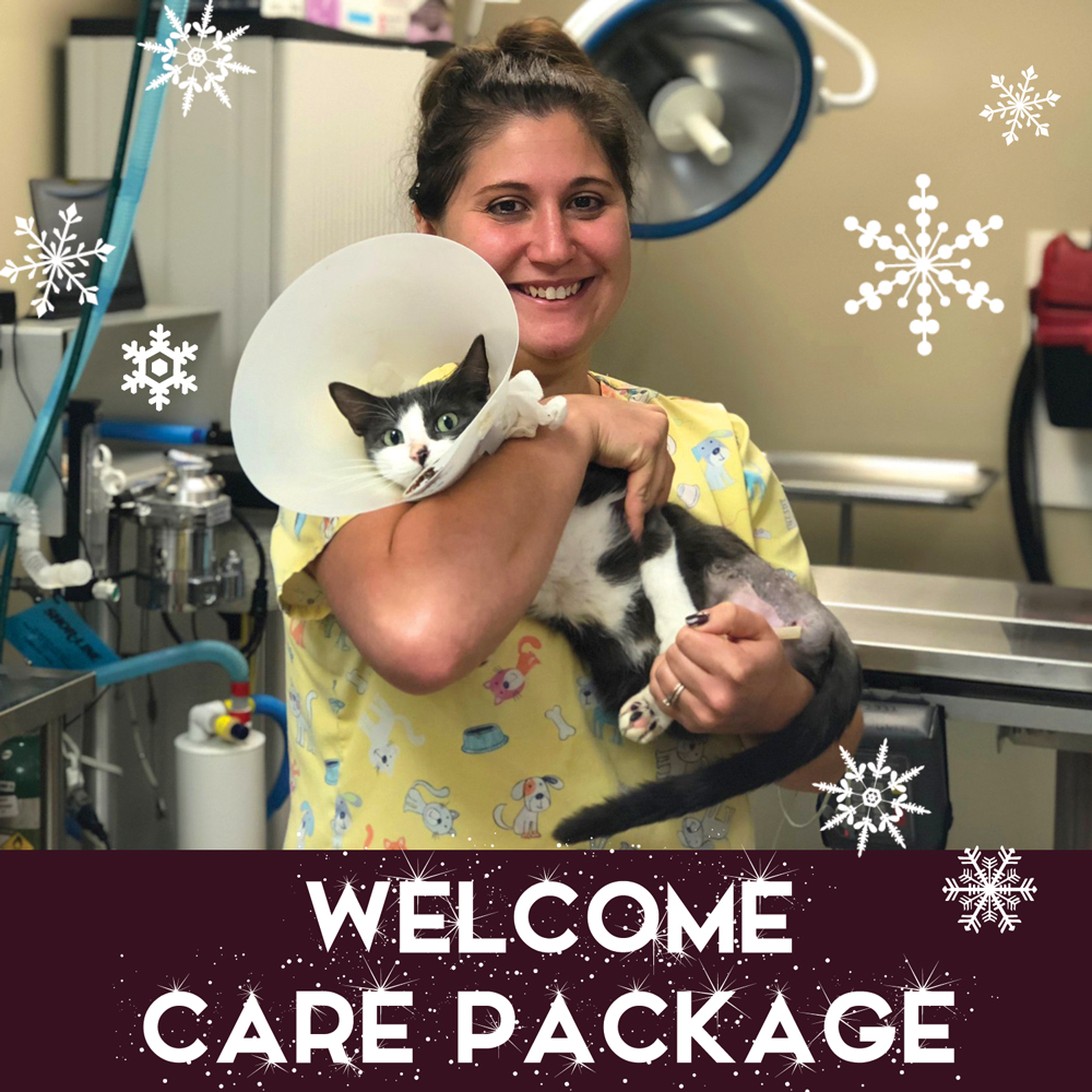 Welcome Care Package 2018 WEB