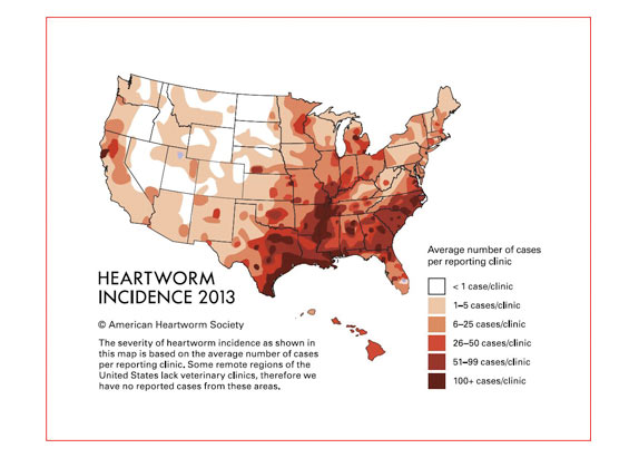 a 600 heartworm map
